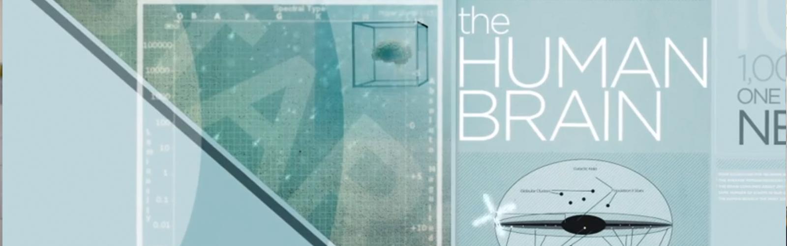 TheHumanBrain-2