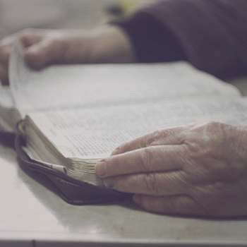 does-the-bible-blog
